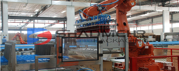Robot encasing machine